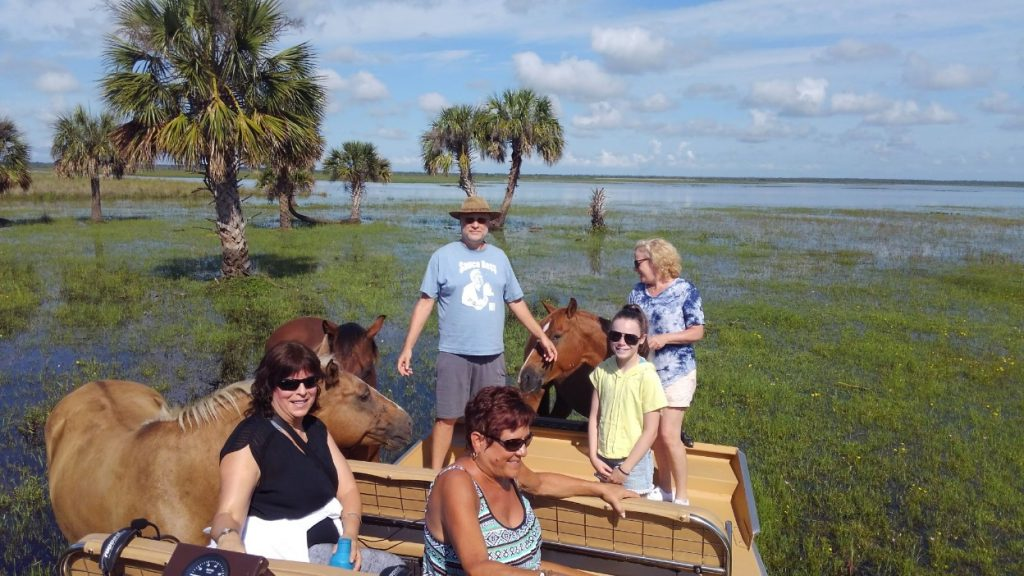 Airboat passengers petting the marsh horses